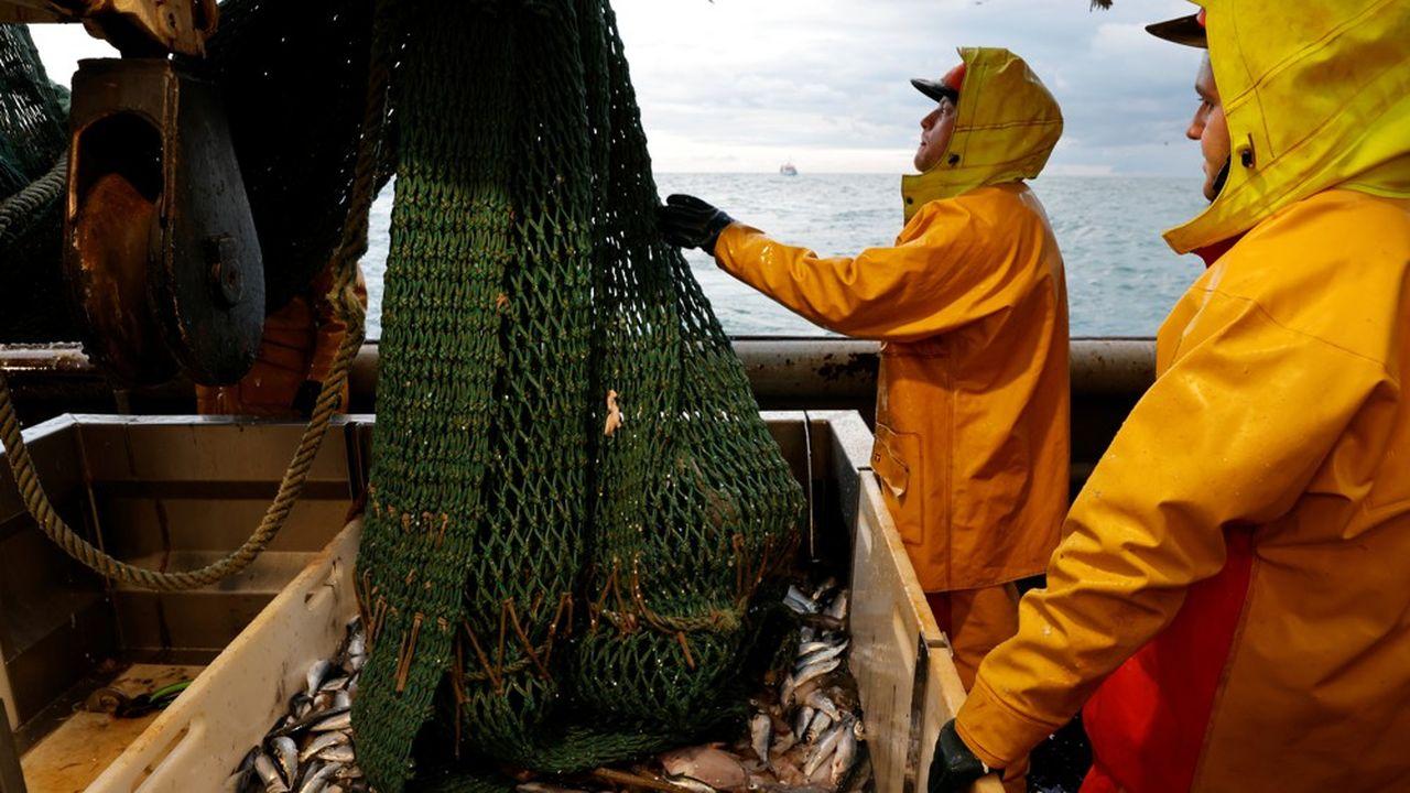 Le dossier de la pêche reste l'un des sujets de désaccord dans les négociations entre le Royaume-Uni et l'Union européenne.
