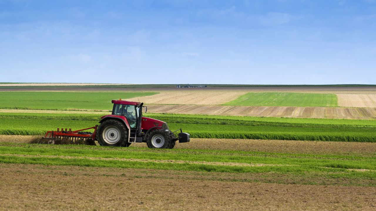 Le pacte de Milan a rallié 200 édiles autour de trois engagements principaux: préserver les terres agricoles, favoriser les circuits de proximité et lutter contre le gaspillage alimentaire.