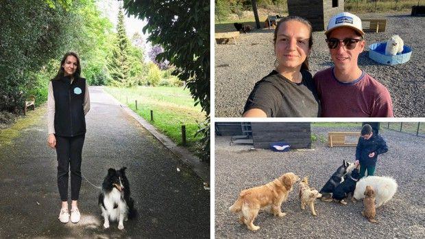 Claire et Tom Depirou proposent plusieurs services: ils gardent des chiens chez eux ou chez les propriétaires, proposent des balades, et accueillent des chiens dans un centre aéré inauguré en septembre.