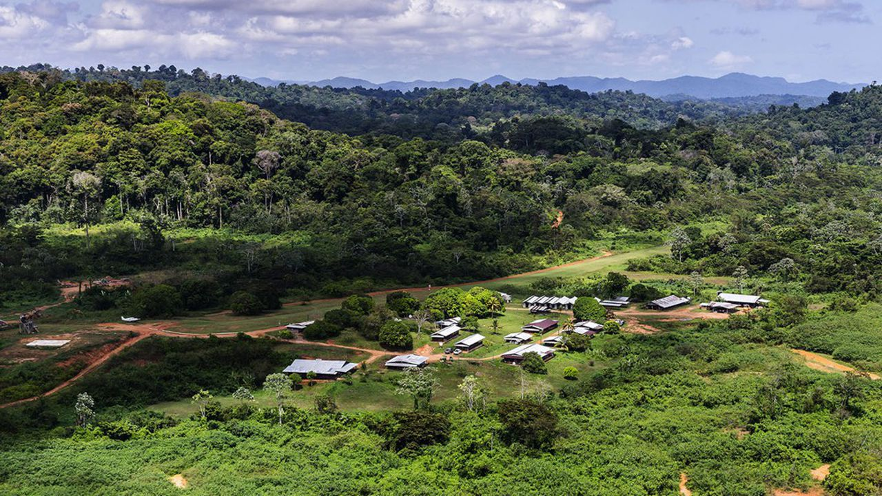 Le camp de base de la Montagne d'Or en Guyane.