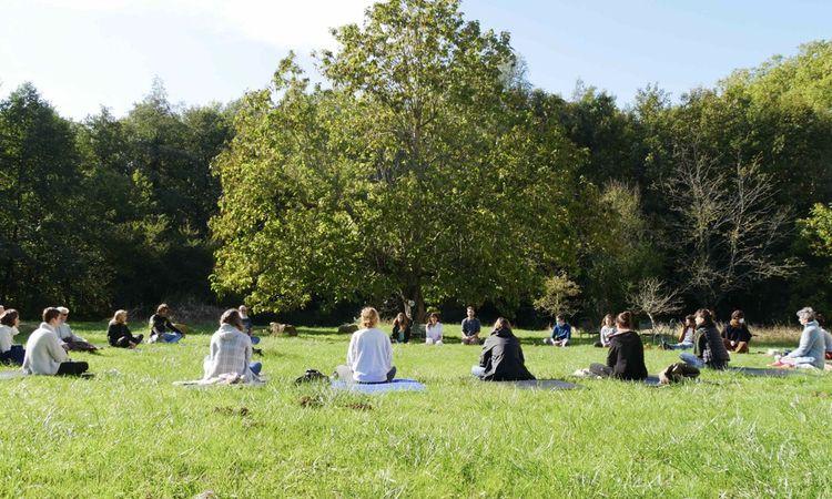 Les journées des participants sont rythmées par des cours de yoga, de qi gong, de la méditation… Seuls les intervenants prennent la parole.