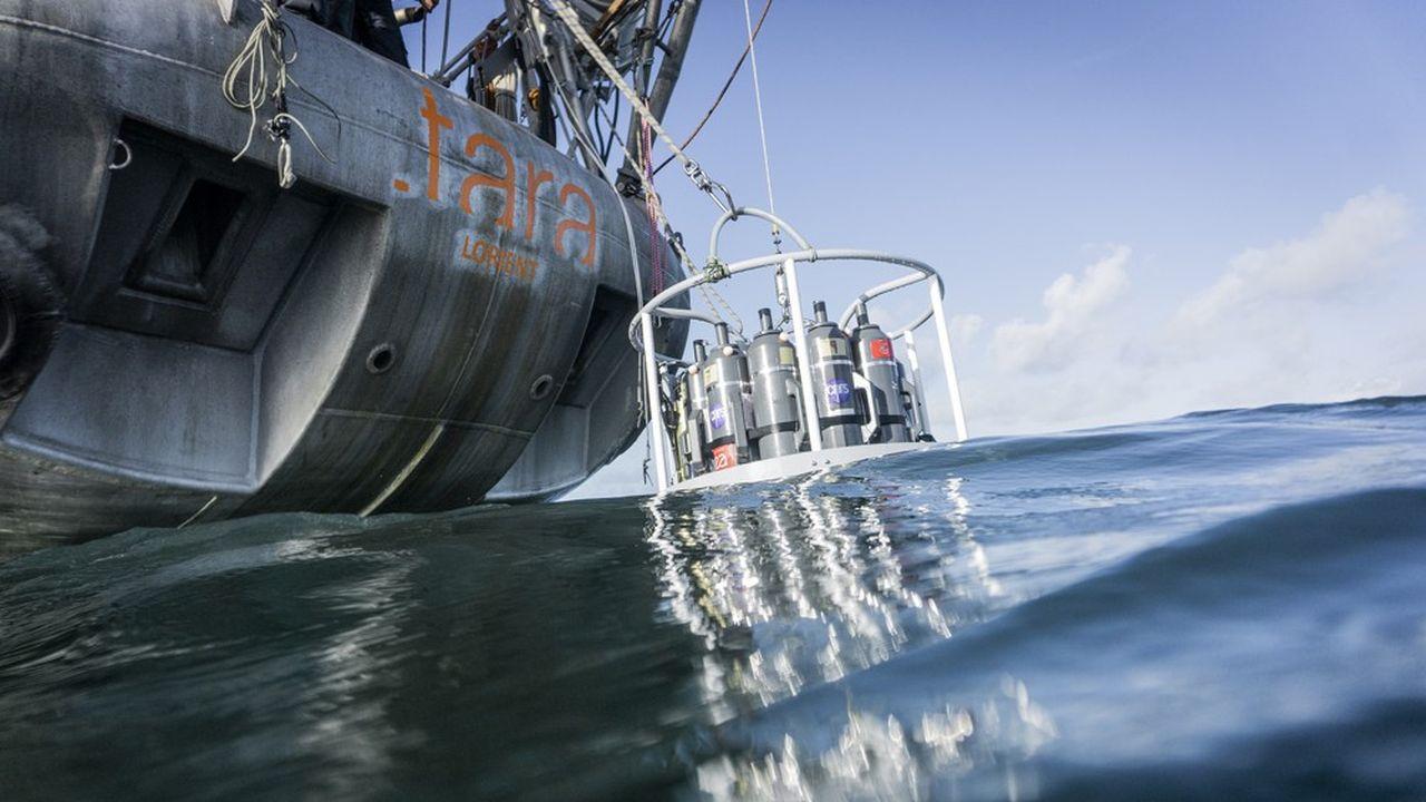 Partie de Lorient le 12décembre, la goélette «Tara» va parcourir 70.000kilomètresen sillonnant essentiellement l'Atlantique Sud.