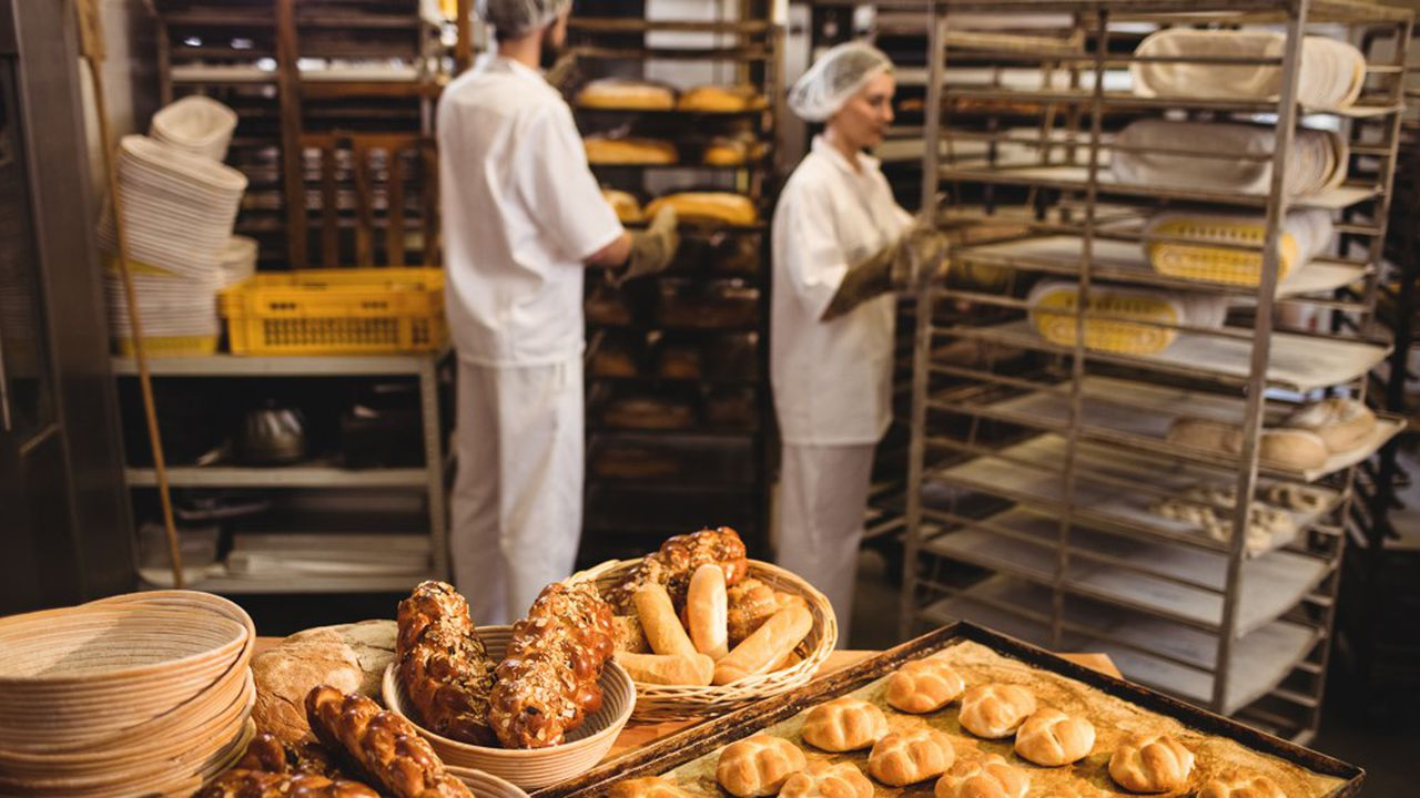 Qu'ils soient en CDD, en CDI ou en contrat en alternance, tous les salariés de TPE sont concernés par l'élection de représentativité dans les très petites entreprises.