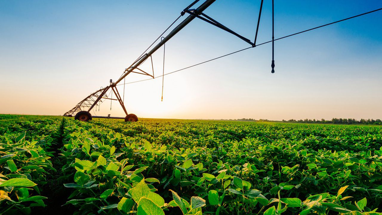 Les importations chinoises de soja ont passé la barre symbolique des 100millions de tonnes.