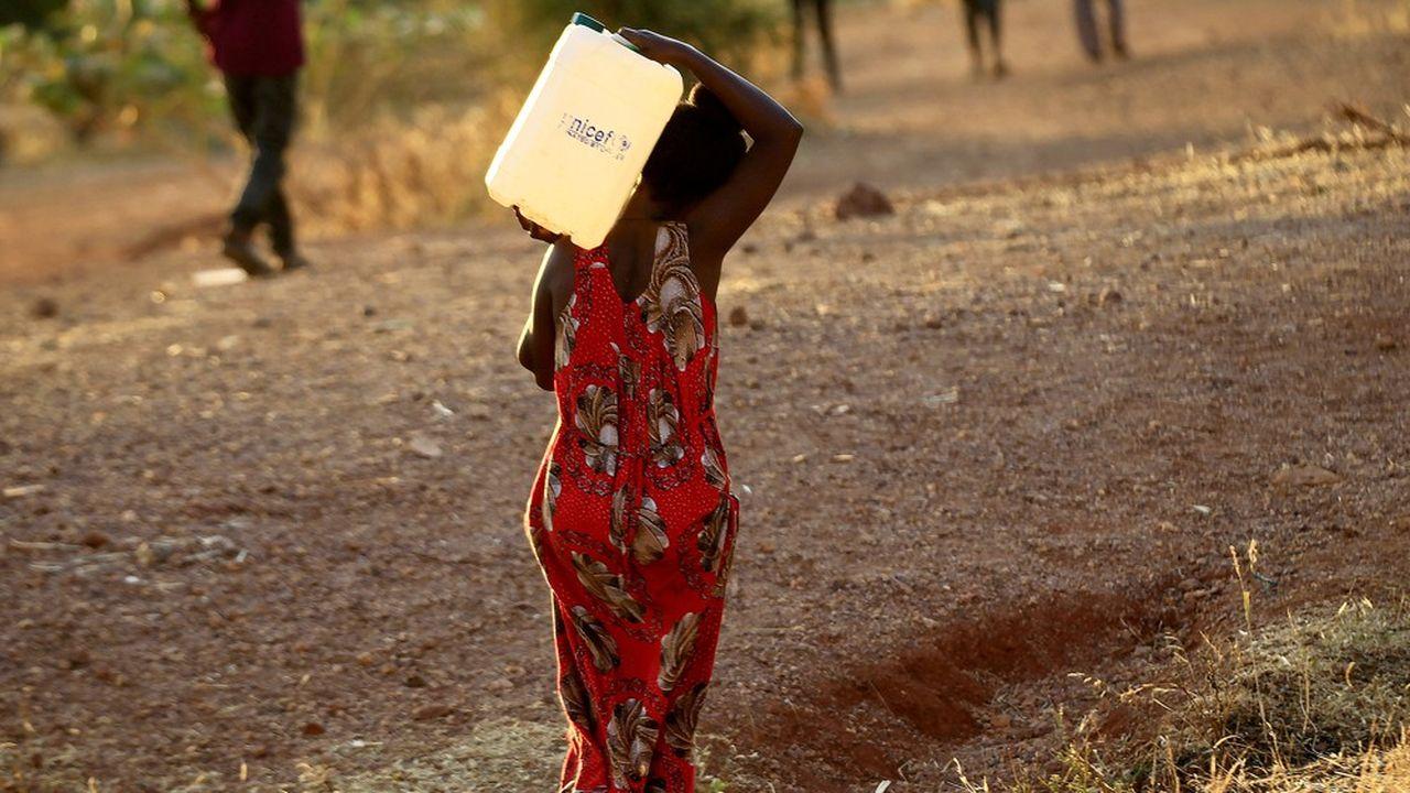 C'est parce que la crise climatique transcende toutes les autres, notamment alimentaire, que les fondations, quelle que soit leur vocation, ont décidé de prendre leur part dans la lutte contrele réchauffement.