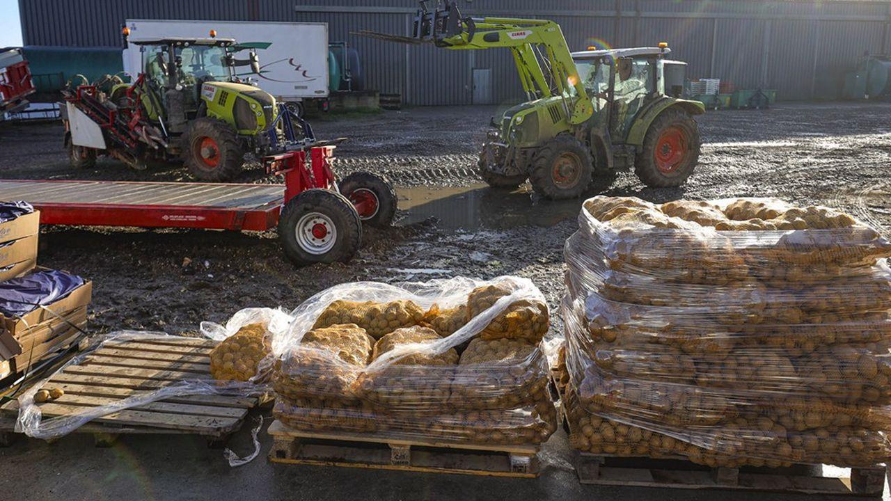 Le Projet alimentaire territorial (PAT) Cergy-Pontoise Vexin français veut engager le territoire dans une transition agricole et alimentaire.