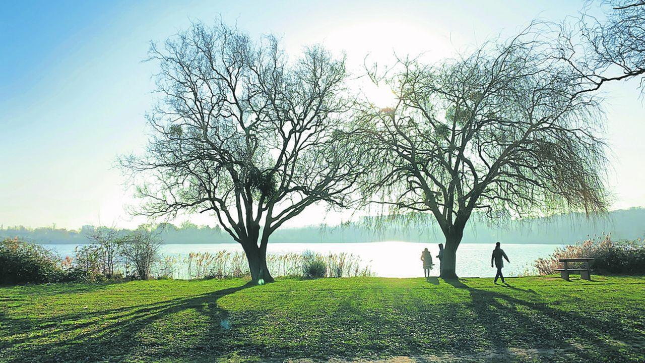 Trois épisodes de pollution relancent le débat sur la gestion des lacs de l'Essonne.