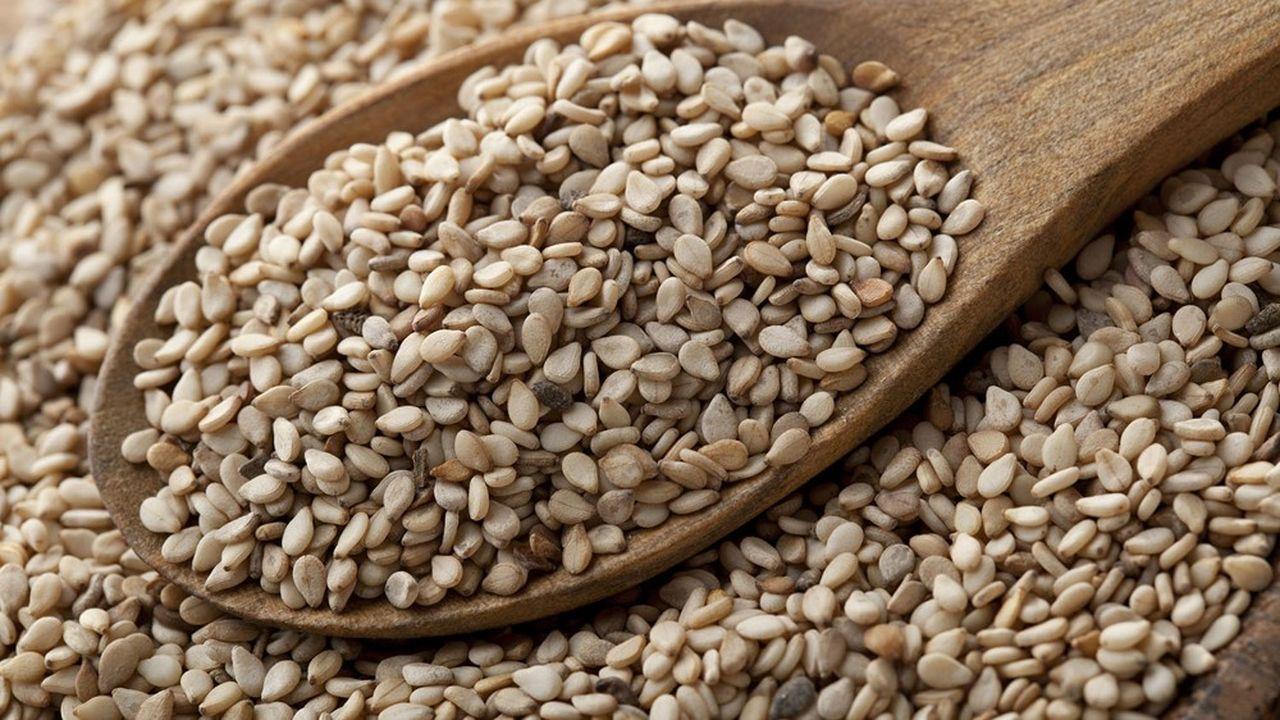 Le sésame importé en France vient pour 60% d'Inde.
