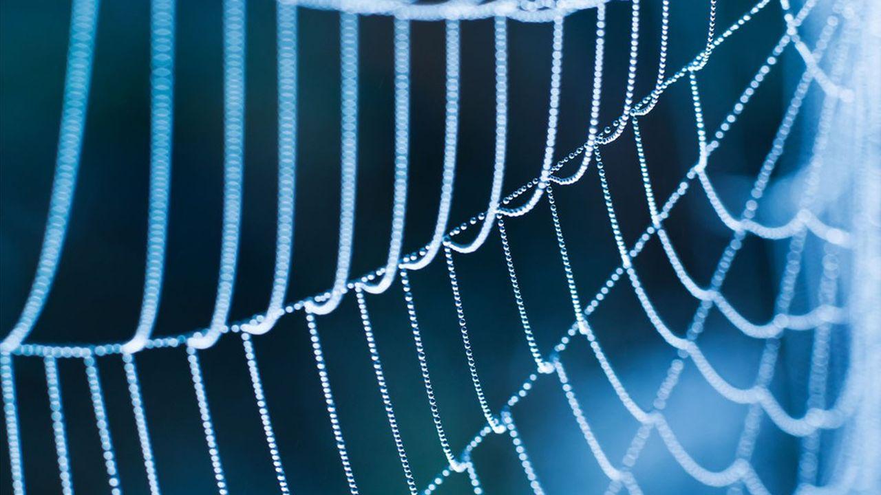 La soie du fil de l'araignée est dix fois plus solide que le kevlar et pourtant fantastiquement extensible.