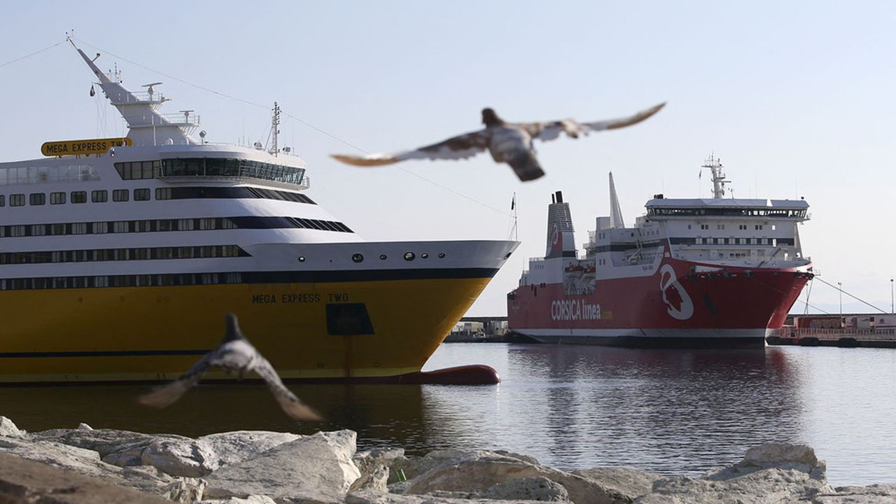 Si la coque jaune des ferries de Corsica Ferries côtoie celle, rouge, de Corsica Linea, la compagnie sous pavillon bis italien a été écartée de la prochaine DSP tandis que l'ex-SNCM devrait récupérer l'essentiel de la délégation de service public.