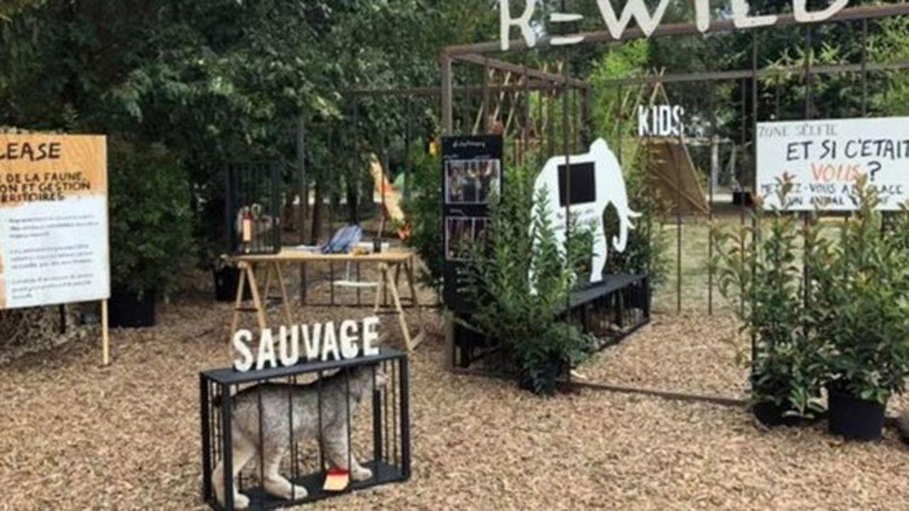 Le zoo de Pont-Scorff accueille des animaux en captivité, victimes de trafics.