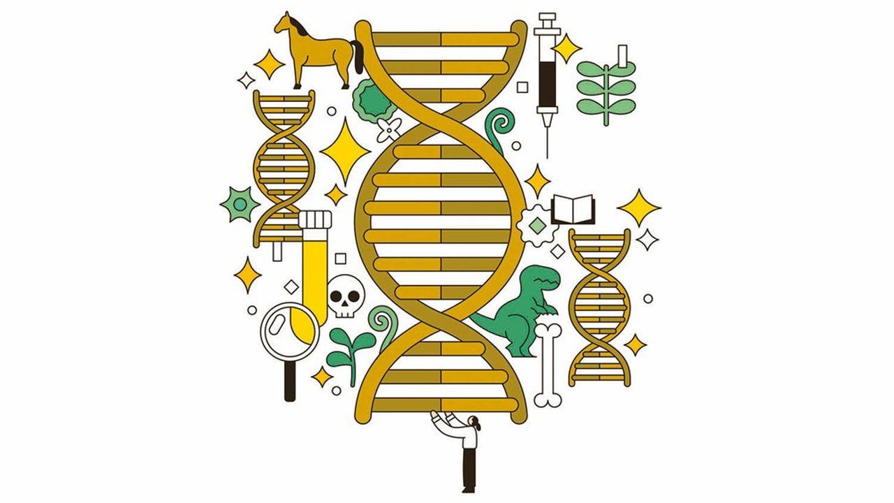 Quand l'ADN fossile redessine le passé... | Les Echos