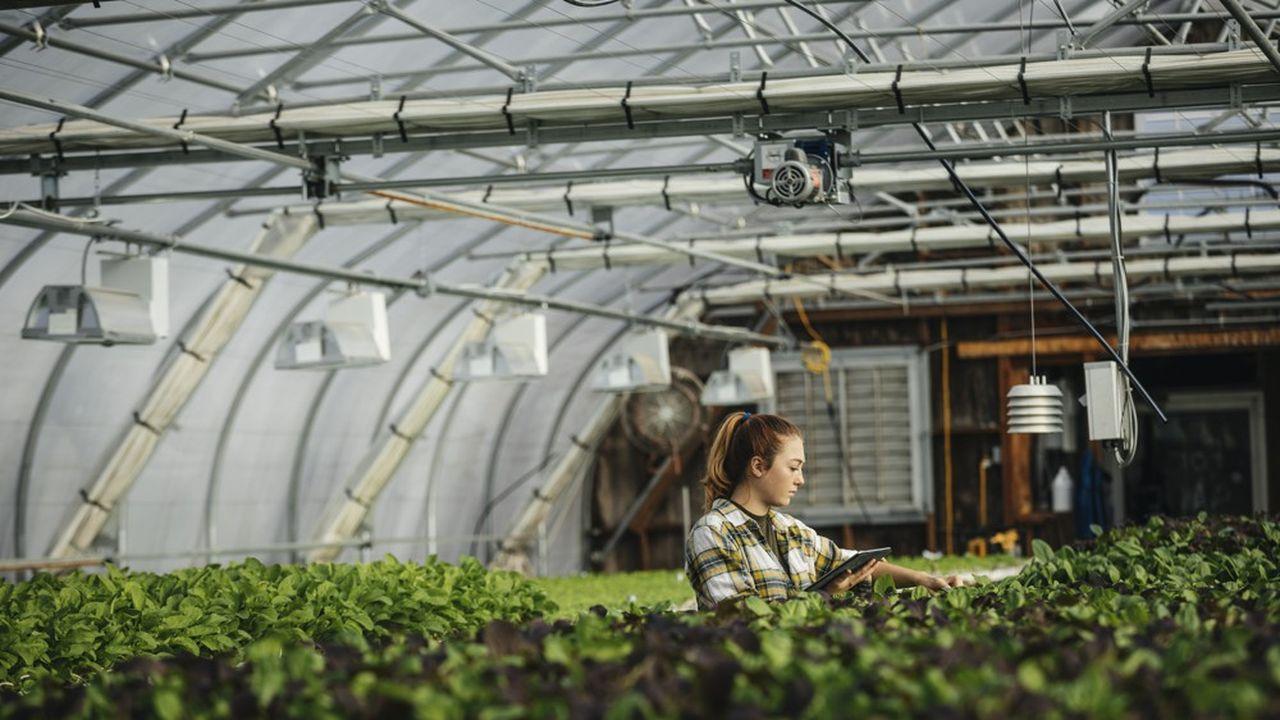 De nouveaux métiers apparaissent, ceux de l'agriculture responsable de demain.