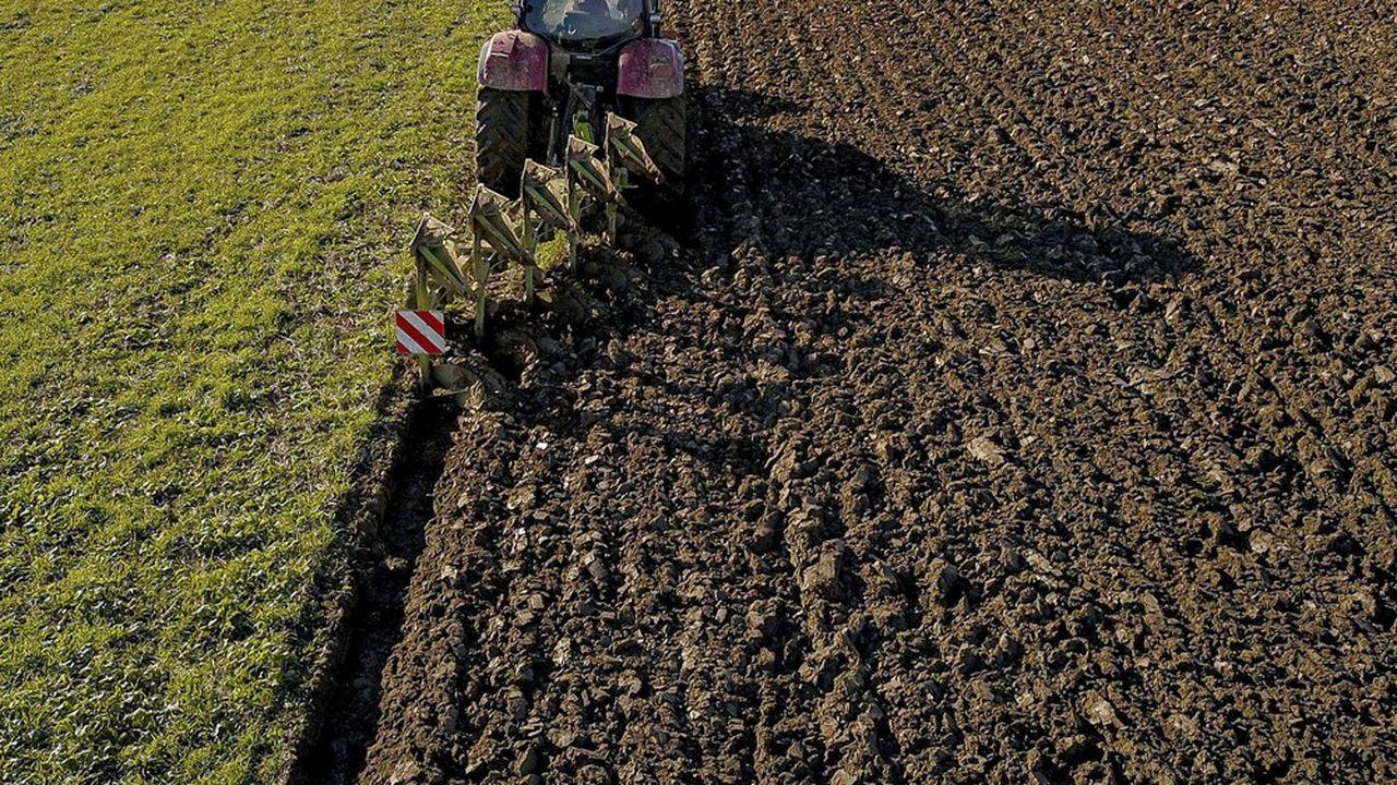 Serge Papin, l'ancien président de Système U, a été missionné par le ministre de l'Agriculture, Julien Denormandie, pour améliorer les relations commerciales entre les producteurs agricoles, les industriels et les distributeurs.