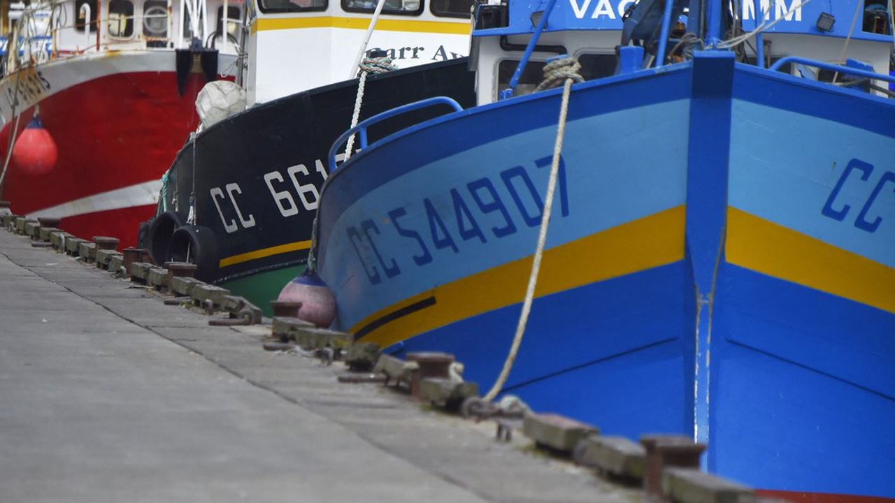 Le projet prévoit de créer à Duqm un port de pêche calqué sur le modèle de celui de Lorient.