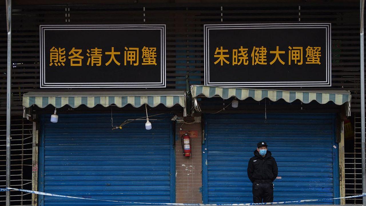 De nombreux animaux transitaient par le marché de Huanan à Wuhan, venant notamment d'élevages d'animaux exotiques situés ailleurs en Chine.