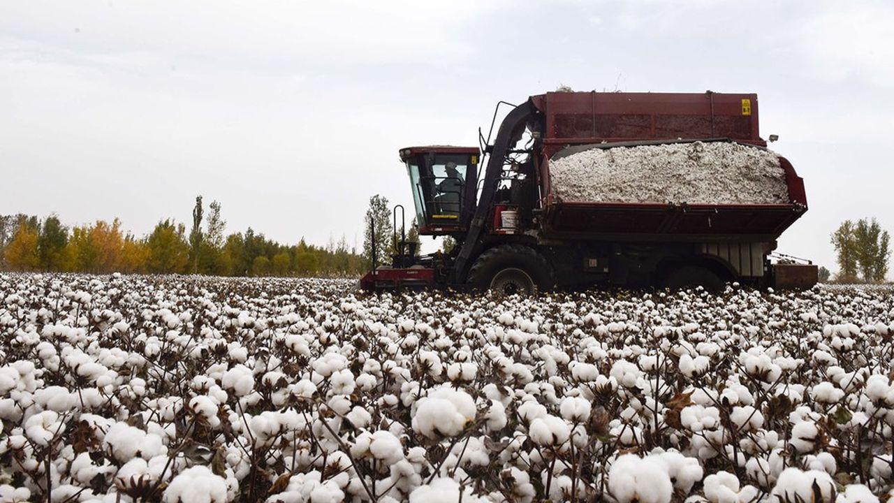La Chine représente environ 20% de la production mondiale de coton, qu'elle file et tisse dans des usines sur place.