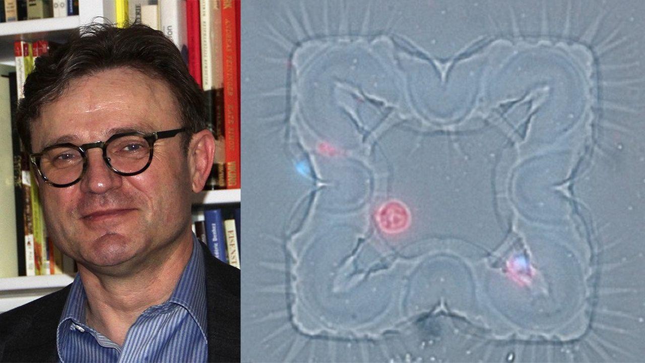 Pierre Le Ber, directeur général de Minos Biosciences qui a mis au point une technologie inédite d'analyse de cellules uniques pour la recherche clinique et le diagnostic.