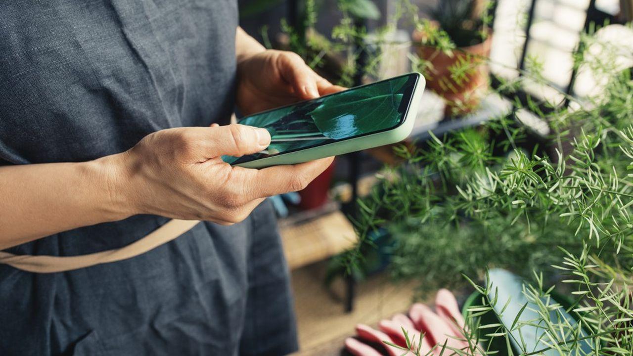 Votre smartphone peut devenir votre meilleur ami quand il s'agit de s'occuper de vos plantes vertes ou de vos tomates cerises.
