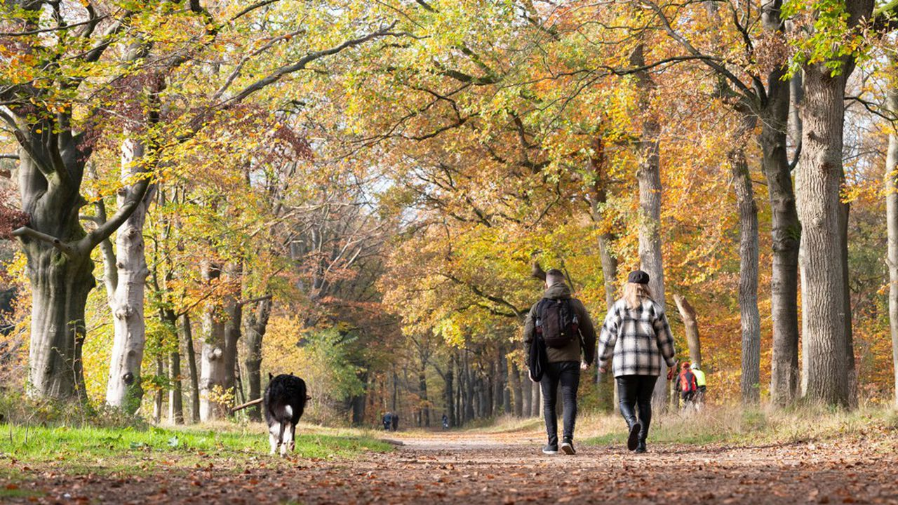 Aux Pays-Bas, on passe d'un régime de retraite collectif à une approche plus individuelle et à un âge de la retraite lié à l'espérance de vie.