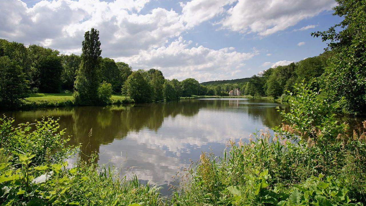 Aux confins de la forêt de Montmorency, dans le Val-d'Oise, la communauté d'agglomération Plaine Vallée a ouvert une plateforme de concertation citoyenne pour élaborer son plan territorial de développement durable (PCAET).