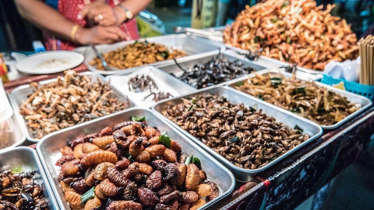 Insetti secchi venduti in un mercato a Bangkok, in Thailandia.  Il loro consumo è già frequente in Asia.