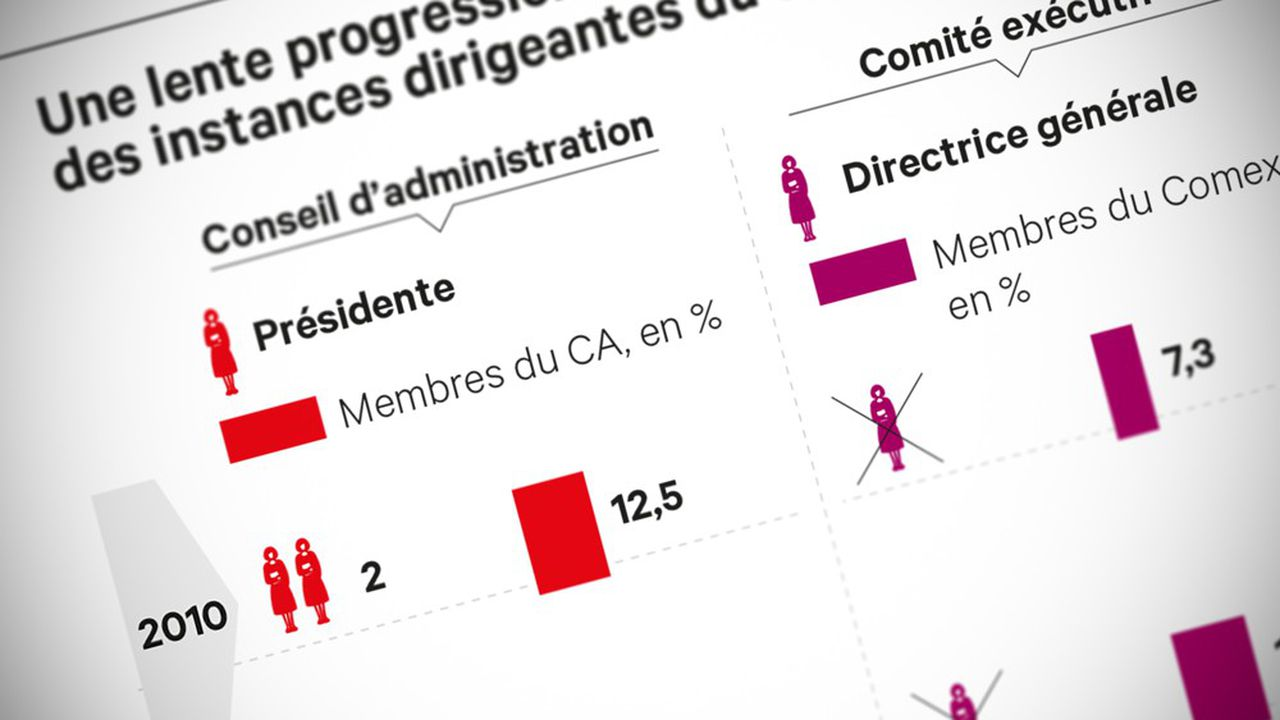 La proposition de loi prévoit d'imposer dans les entreprises de plus de 1.000 salariés 30% de femmes parmi les cadres dirigeants et les cadres membres des instances dirigeantes, d'ici 2027, puis 40% d'ici à 2030.