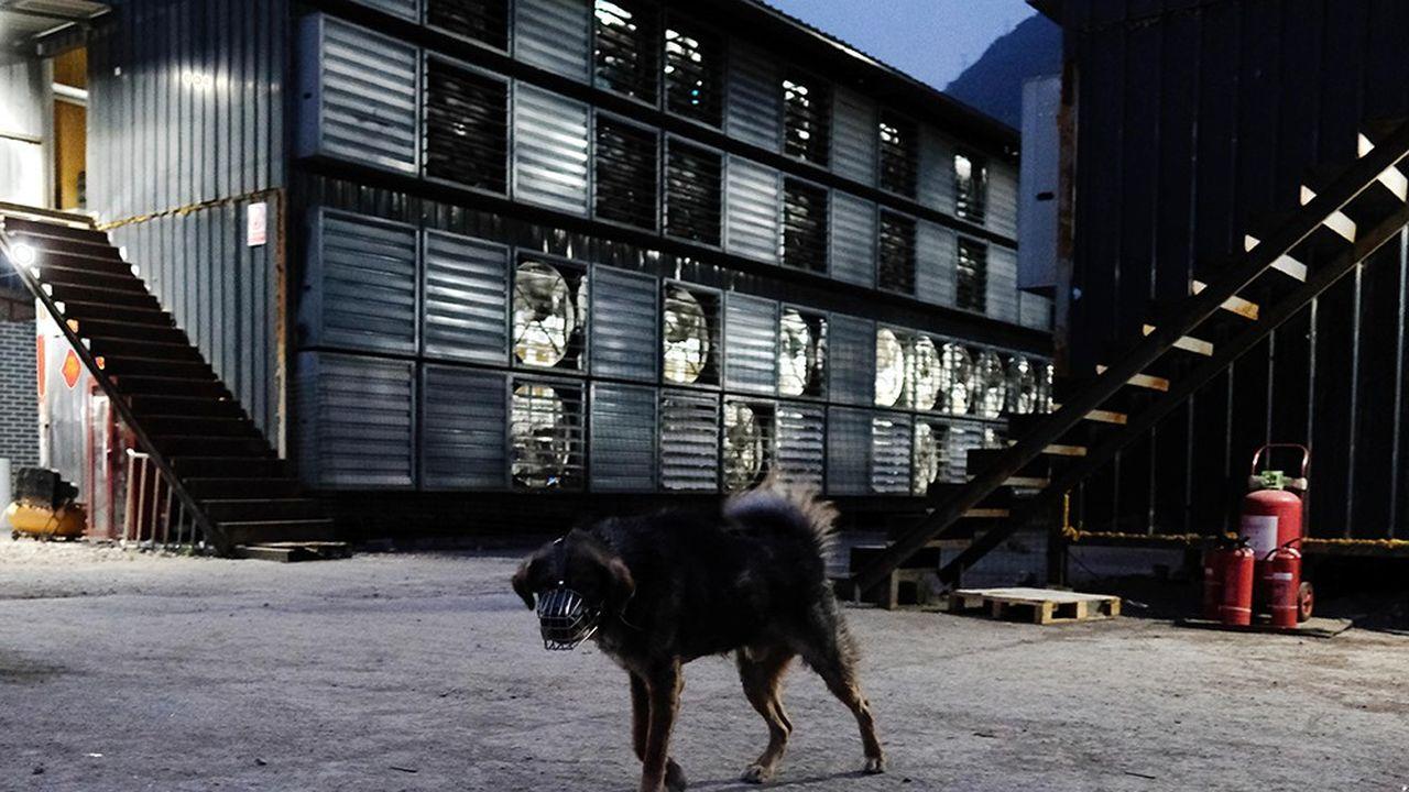 Quatre entrepôts surveillés à la tombée de la nuit par un chien : cette «ferme» à bitcoin est discrètement installée au fond d'une vallée du Sichuan.