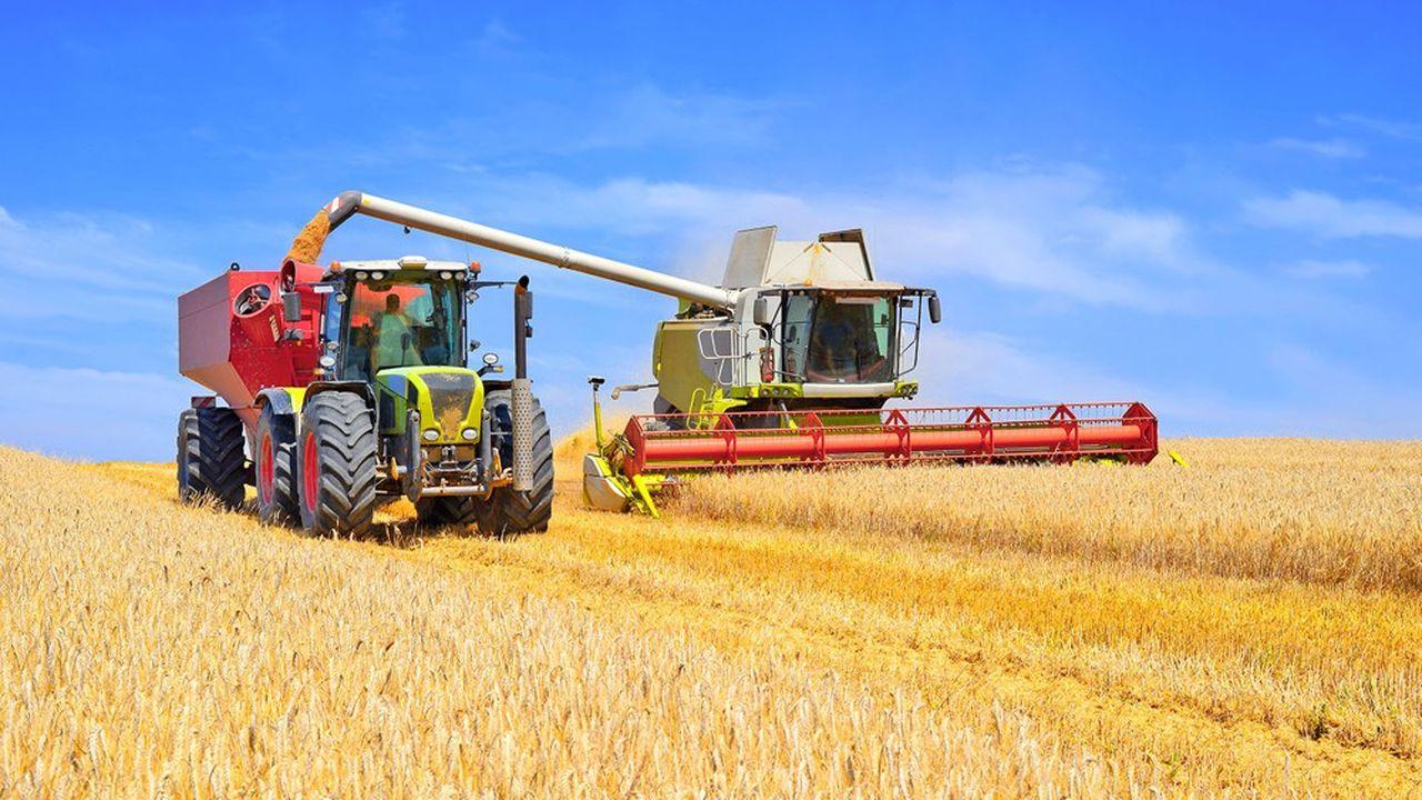 Les pays d'Afrique du Nord et du Moyen-Orient représentent 4 % de la population mondiale, mais réalisent 30 % des achats de blé sur les marchés internationaux.