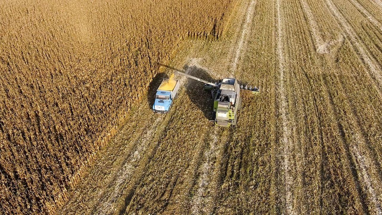 La Russie est l'un des plus grands exportateurs de céréales au monde.