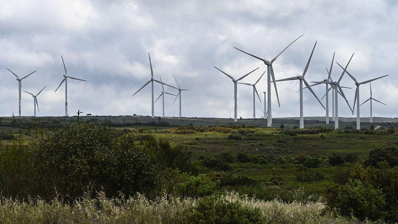 Certains territoires frôlent la saturation de mâts d'éoliennes, nourrissant un sentiment de rejet dans la population.