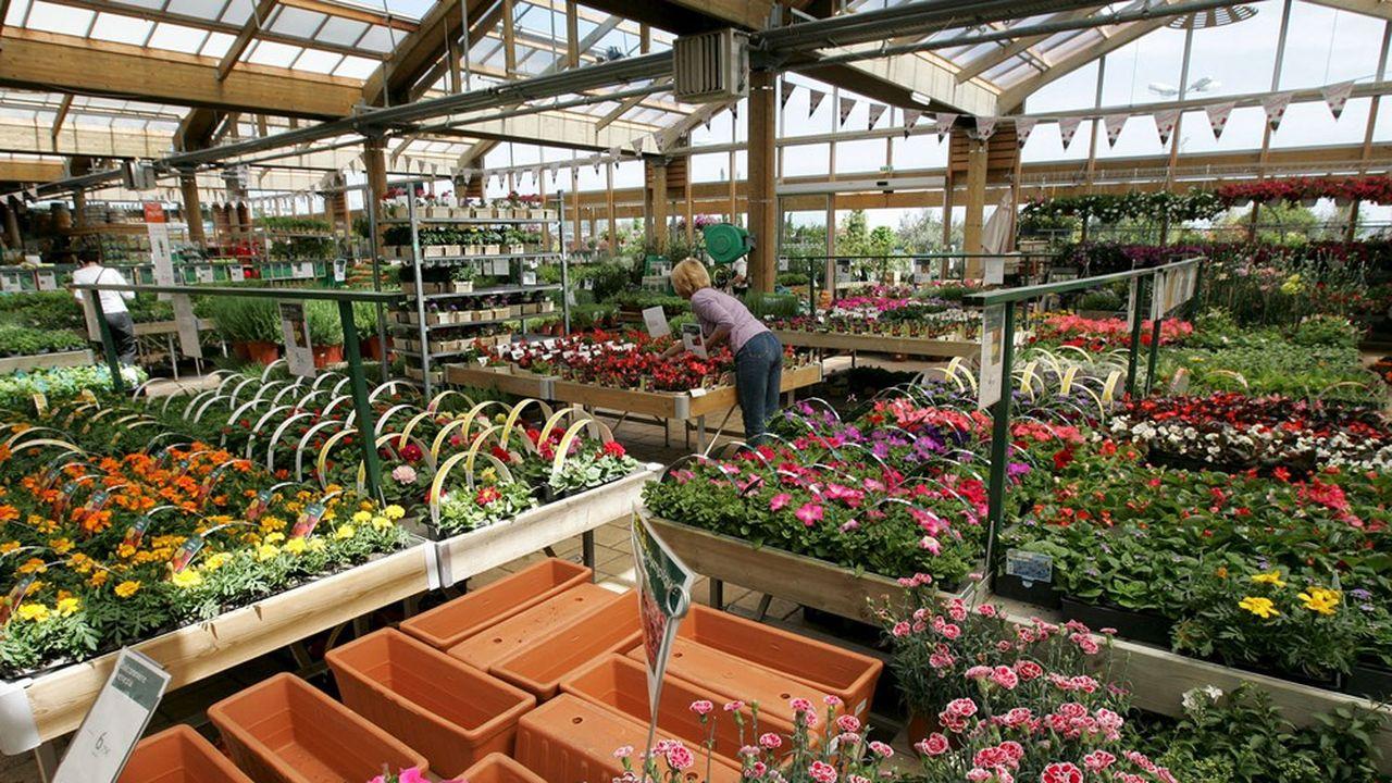 Botanic va ouvrir à Belz son premier magasin breton en 2022.