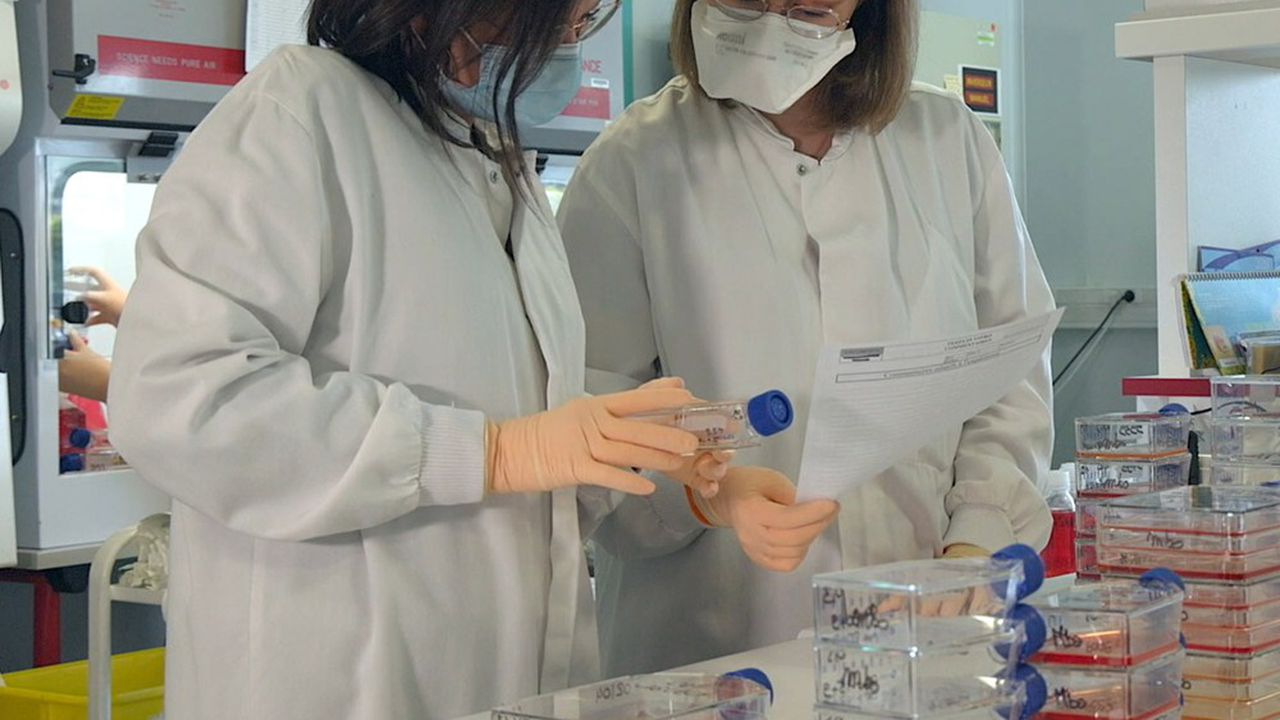 A Dijon, les laboratoires de la société Oncodesign abritent son expertise en «Drug Discovery».