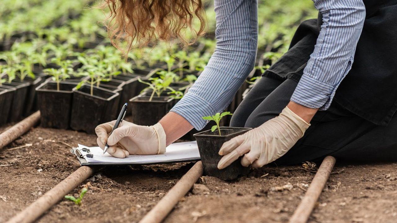 Sevran veut accueillir le premier lycée 100% agroécologique de France.
