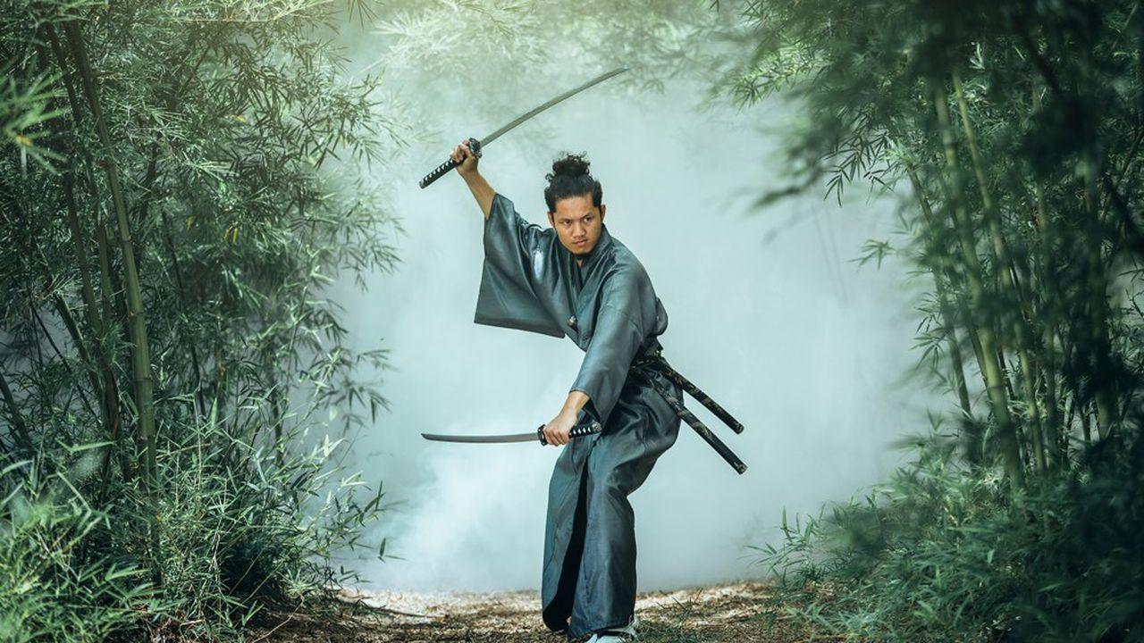 Un samouraï s'apprêtant à aller en assemblée générale de copropriété.