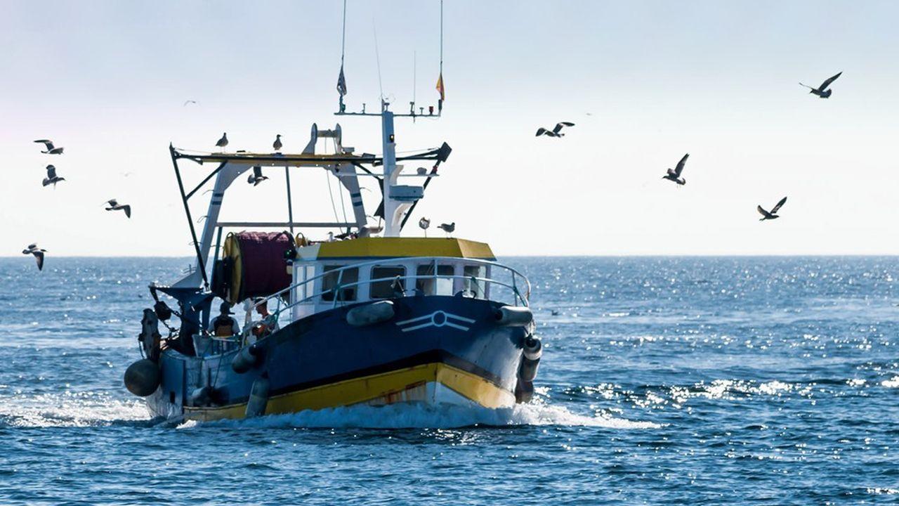 Retour de la pêche, chalutiers dans le port de Guilvinec, dans le Finistère, Bretagne, France.