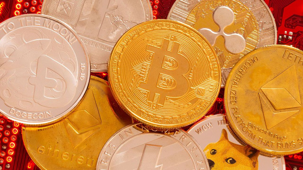 L'investisseur type des cryptos est jeune, diplômé et aisé