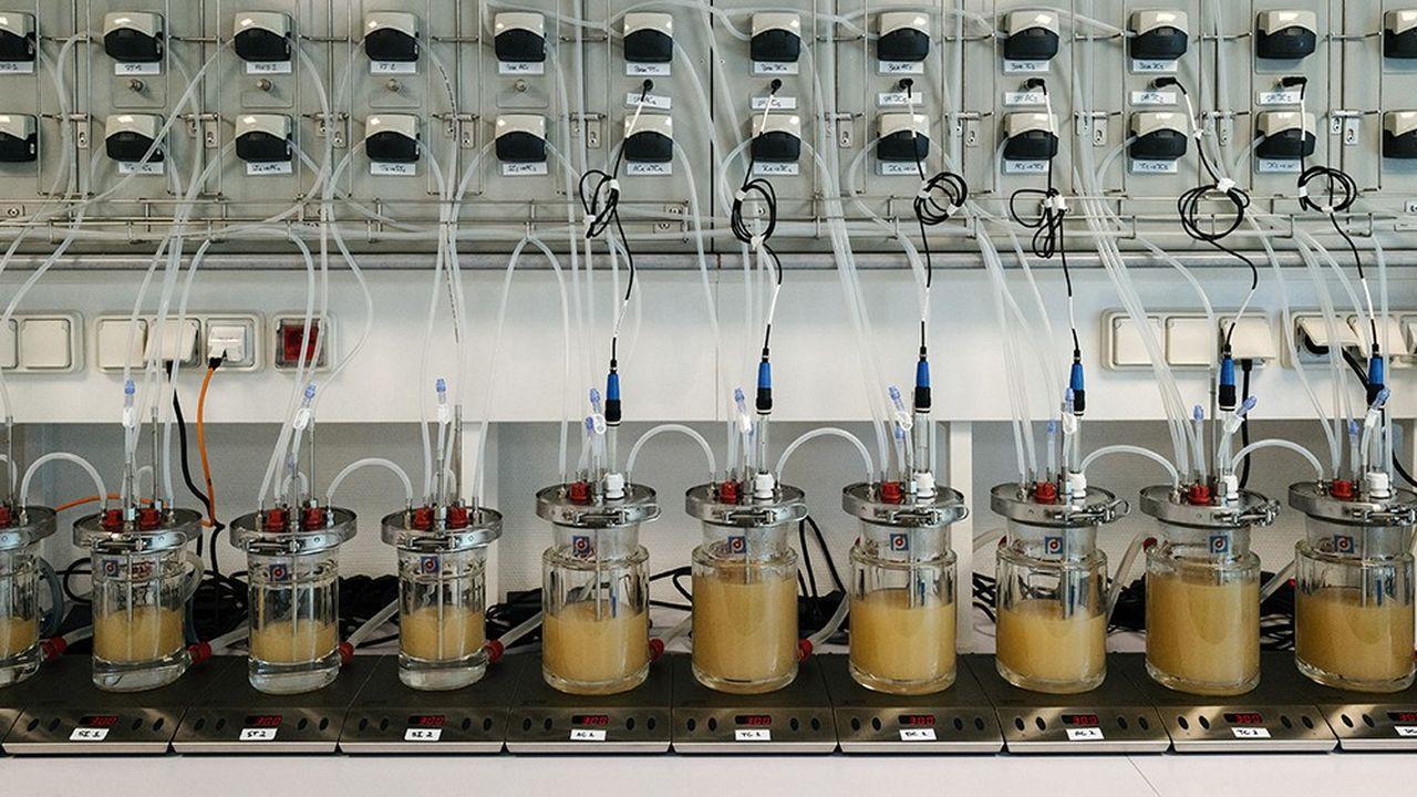 Le simulateur de système digestif humain du centre de recherche de Lesaffre à Loos.,le 16 février 2021.