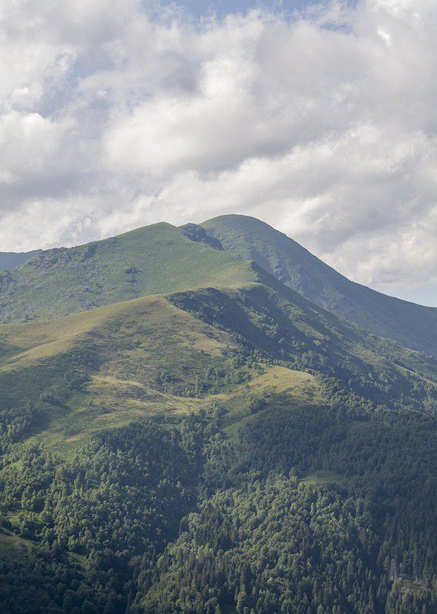 Oasi Zegna, la réserve naturelle créée par Ermenegildo Zegna, un programme de reforestation commencé dans les années 1930.
