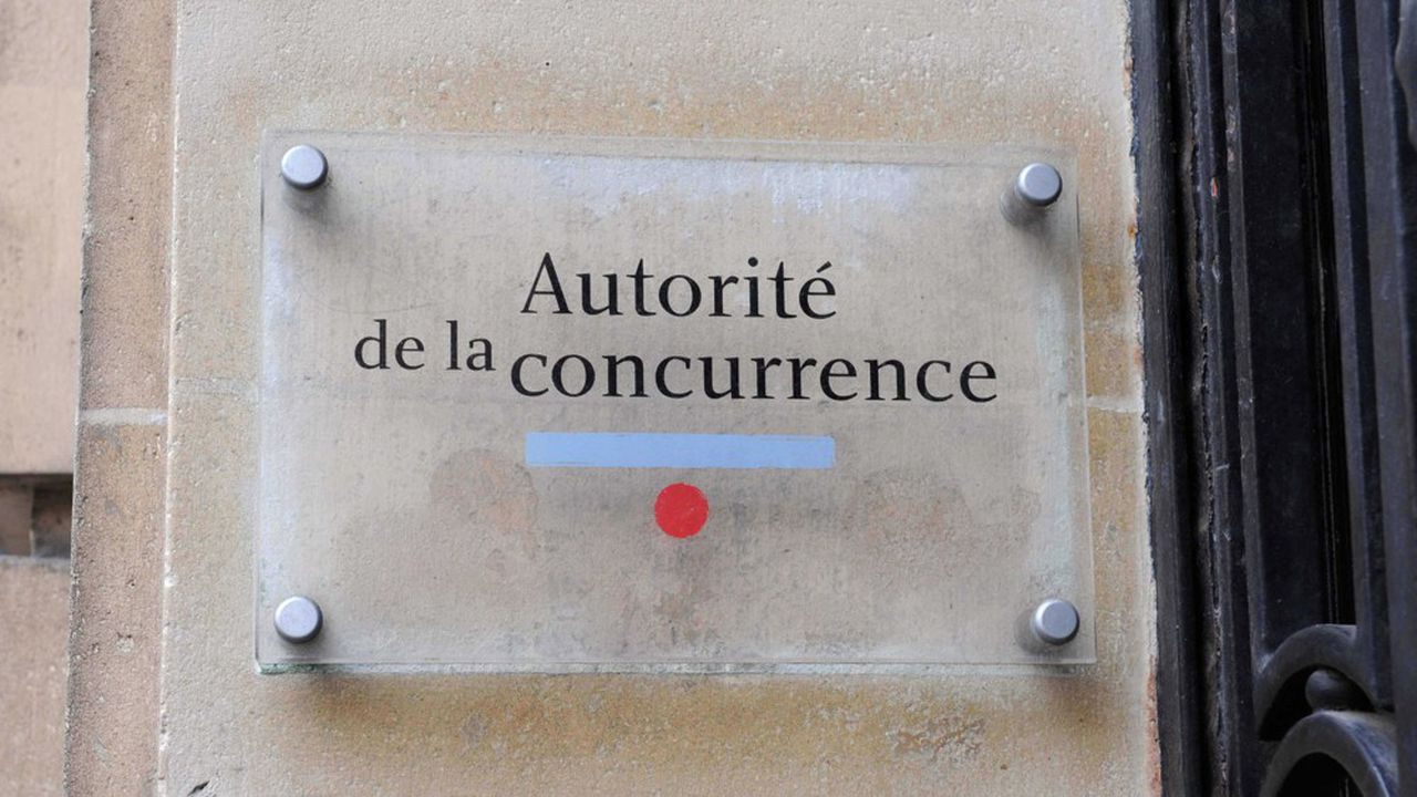 L'Autorité de la concurrence française est présidée depuis cinq ans par Isabelle de Silva