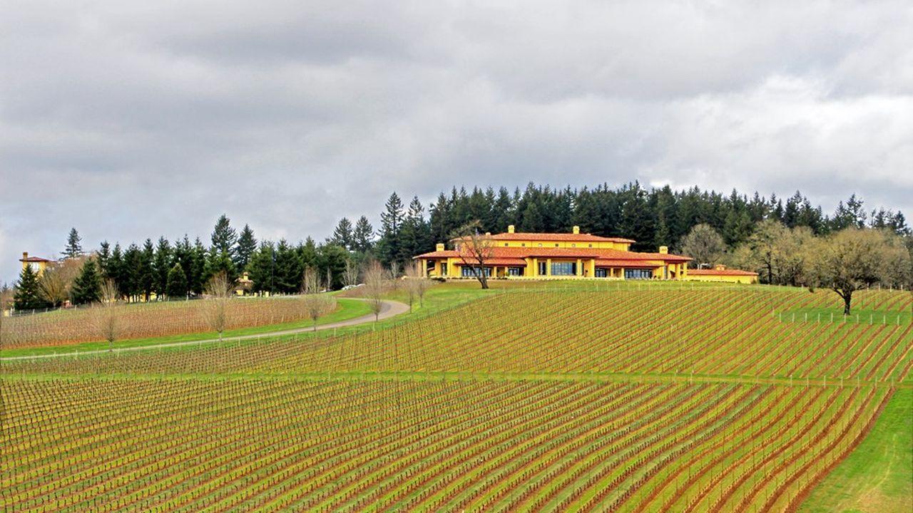 Dans l'Oregon, la famille Evenstad possède 400 hectares, dont 120 hectares de vignes.
