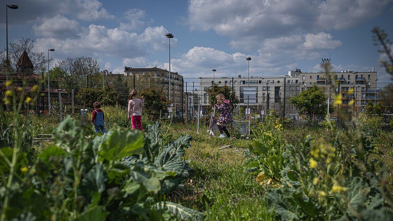 Depuis le 23 avril, des militants campent nuit et jour pour protéger cet espace où les habitants cultivent la terre, des futures infrastructures olympiques