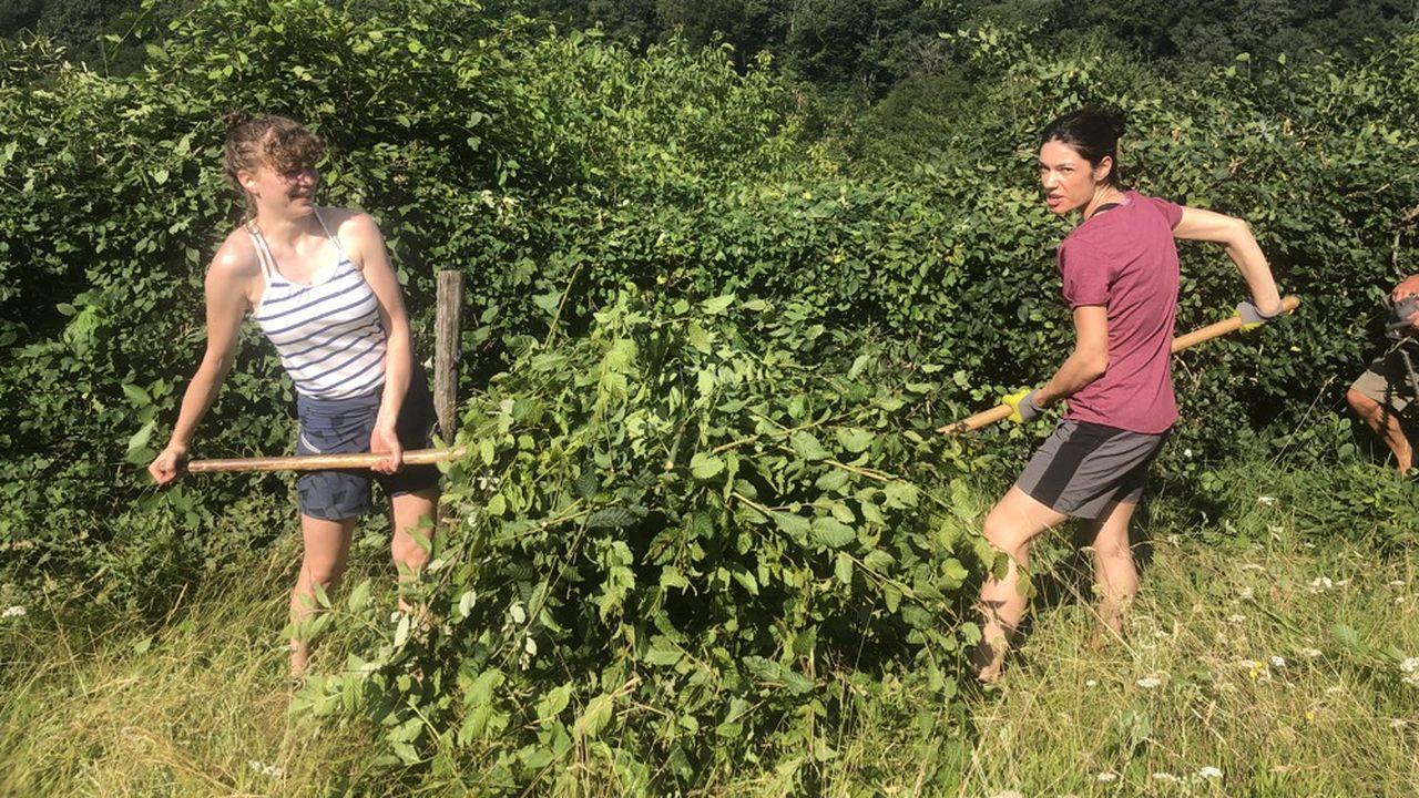 Louise et Noémie en train de ramasser les branches coupées.