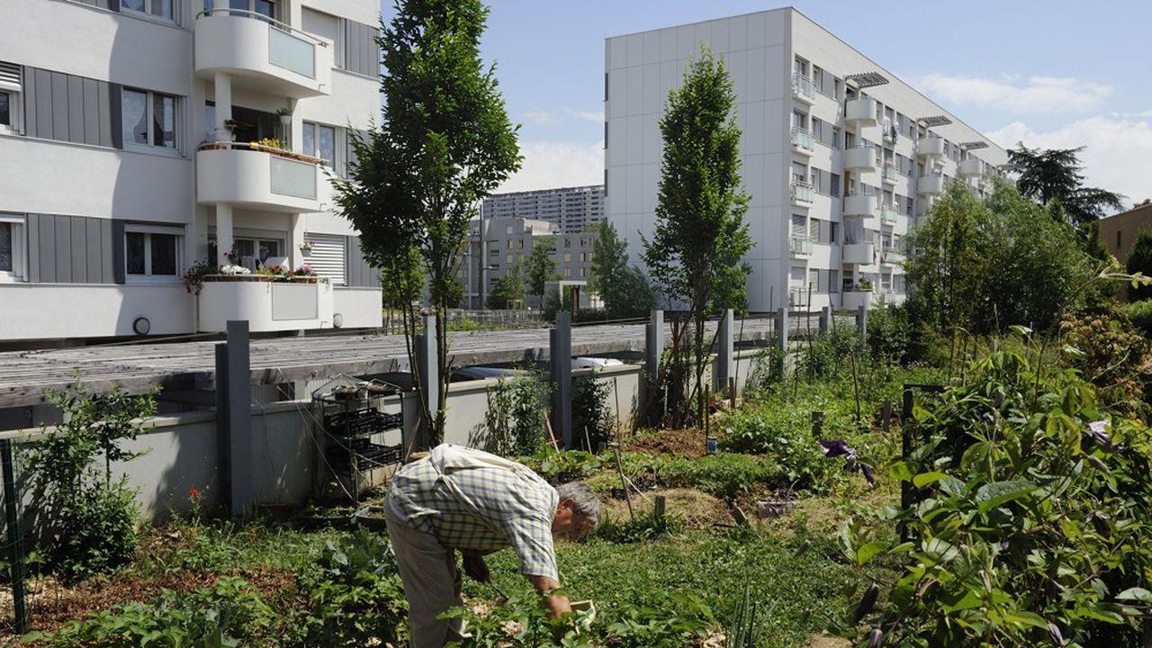 A Lyon, à la Duchère, des composts, des potagers partagés et des cabanes d'enfants sont apparus avec les dernières constructions.