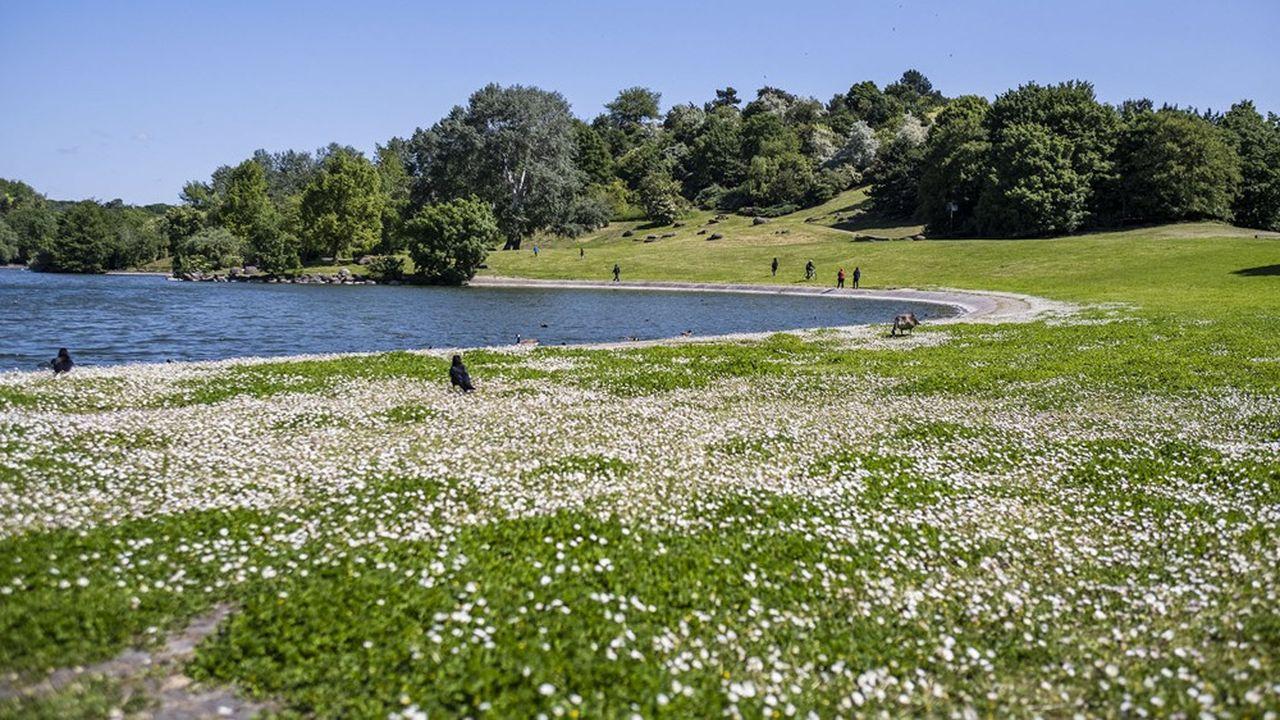 Le parc départemental Georges Valbon accueille jusqu'au 8août des activités pour accompagner les Jeux Olympiques de Tokyo.