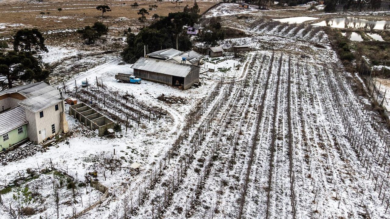 La neige est tombée dans le sud du Brésil fin juillet.