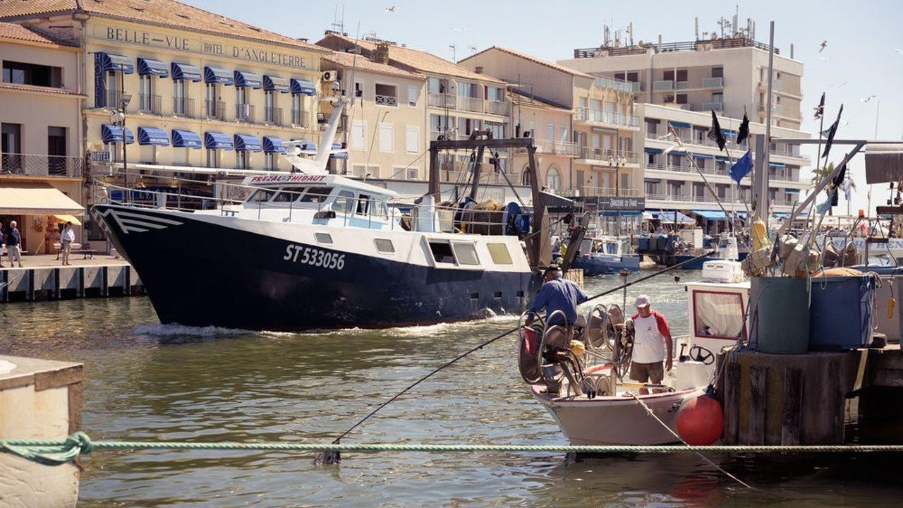 Le port du Grau-du-Roi a perdu les deux tiers de sa flotte en vingt ans.