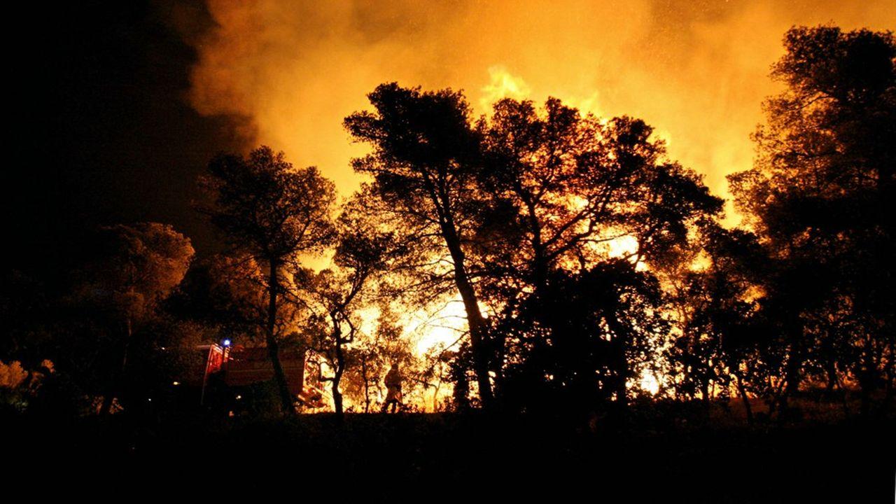 Selon la Préfecture du Var 4.000 hectares ont été brûlés