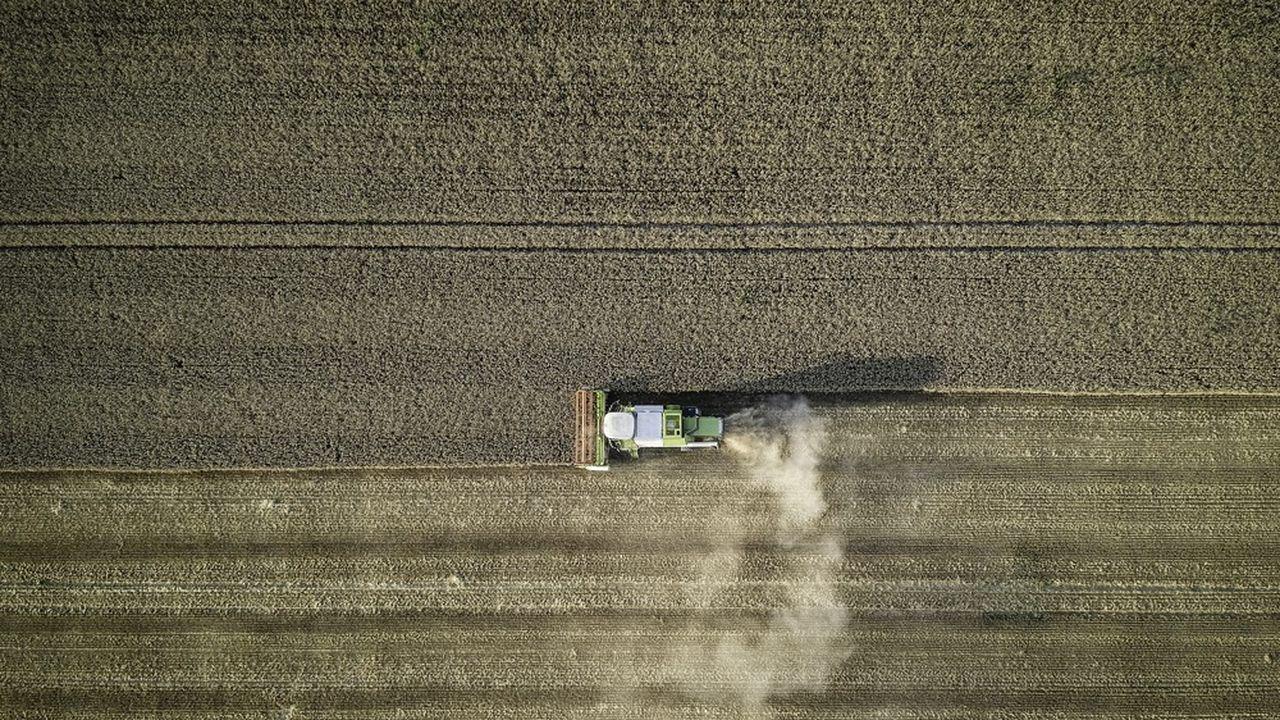 En raison des pluies abondantes en France cet été, la récolte a pris du retard.