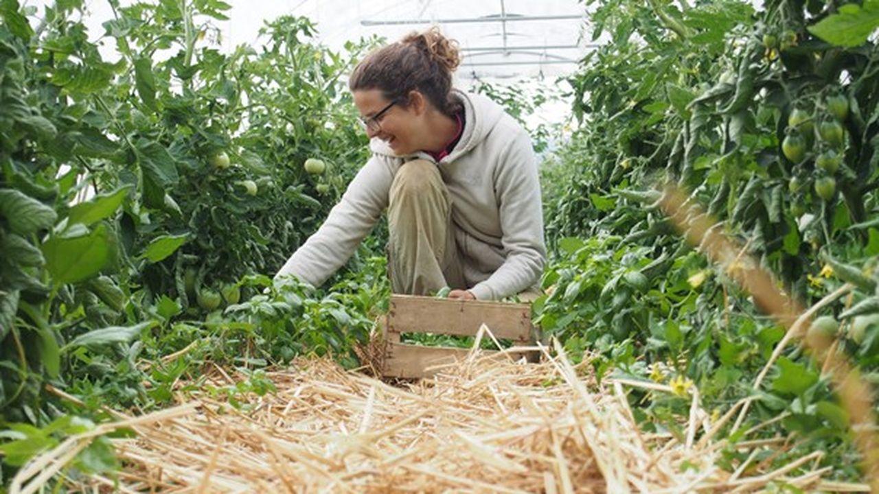 Claire Bordeau a quitté un poste d'ingénieure d'affaires pour lancer sa ferme en permaculture et enseigner le yoga.